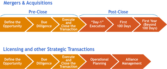 Bristol-Myers Squiib Transaction Process